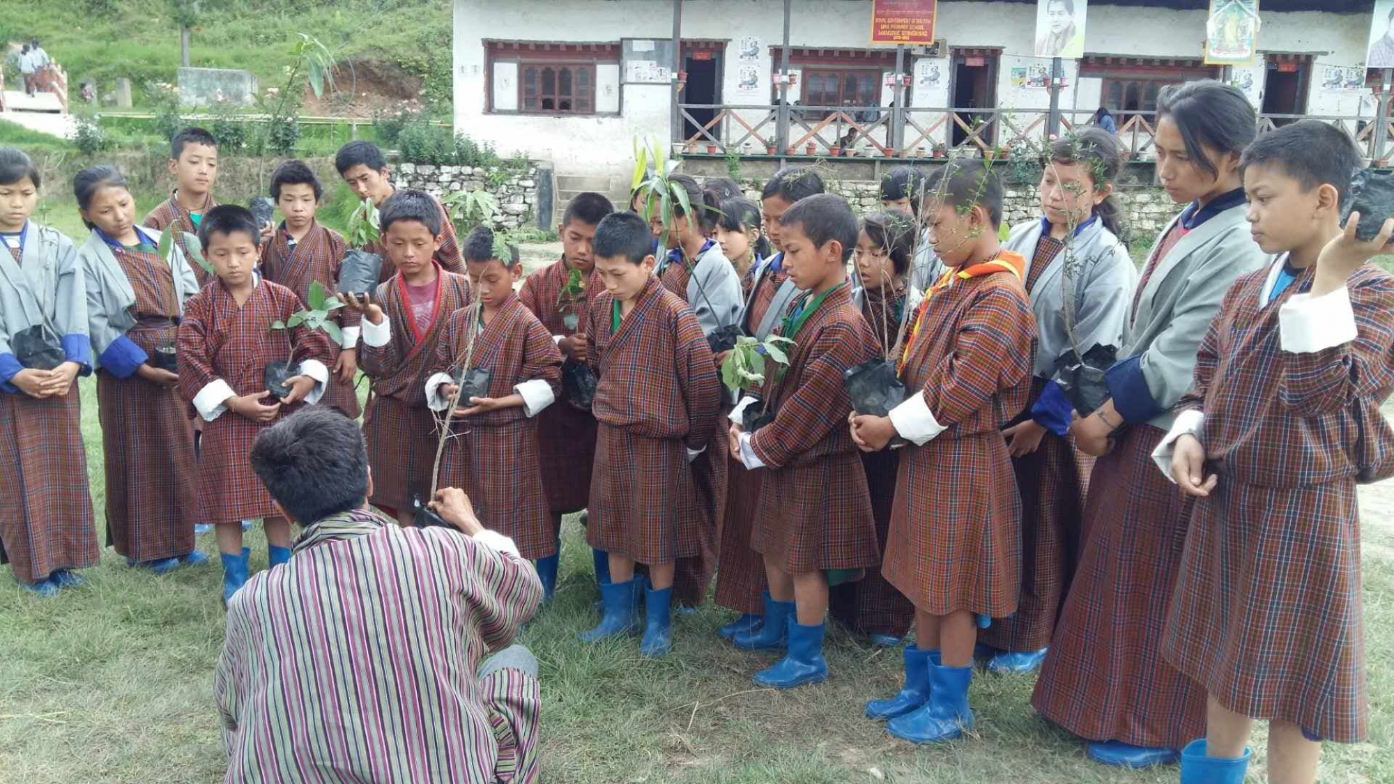 """Fruits for all"" Initiative Implemented in Wangdue"